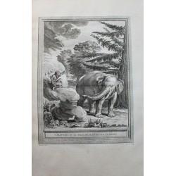 L'ELEPHANT ET LE SINGE DE...