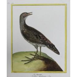 Pájaro -  LA MAROUETTE N°751